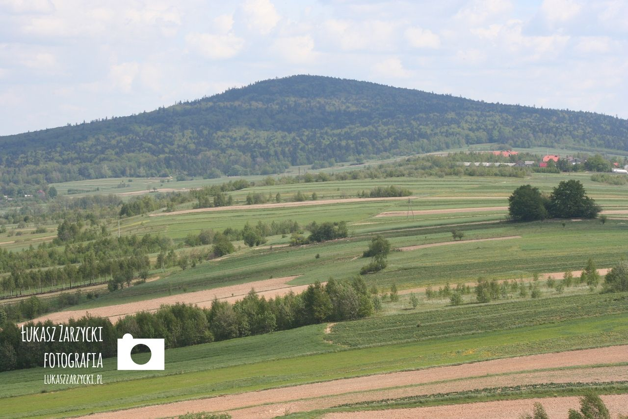 Radostowa, 13.05.2007 r. Widok na Góry Świętokrzyskie (Łysica - 612 m n.p.m.). Fot. Łukasz Zarzycki / lukaszzarzycki.pl
